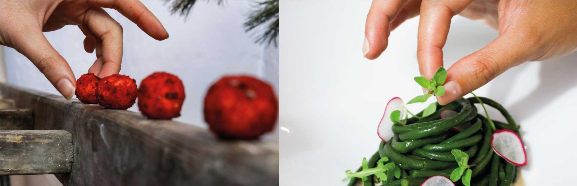 mimosa moodmama sito brochure web branding social eventi portfolio assaggi