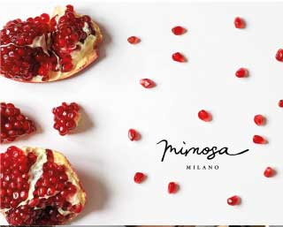mimosa moodmama sito brochure web branding social eventi portfolio mobile