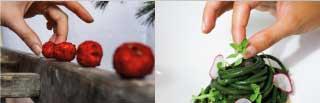 mimosa moodmama sito brochure web branding social eventi portfolio social mobile