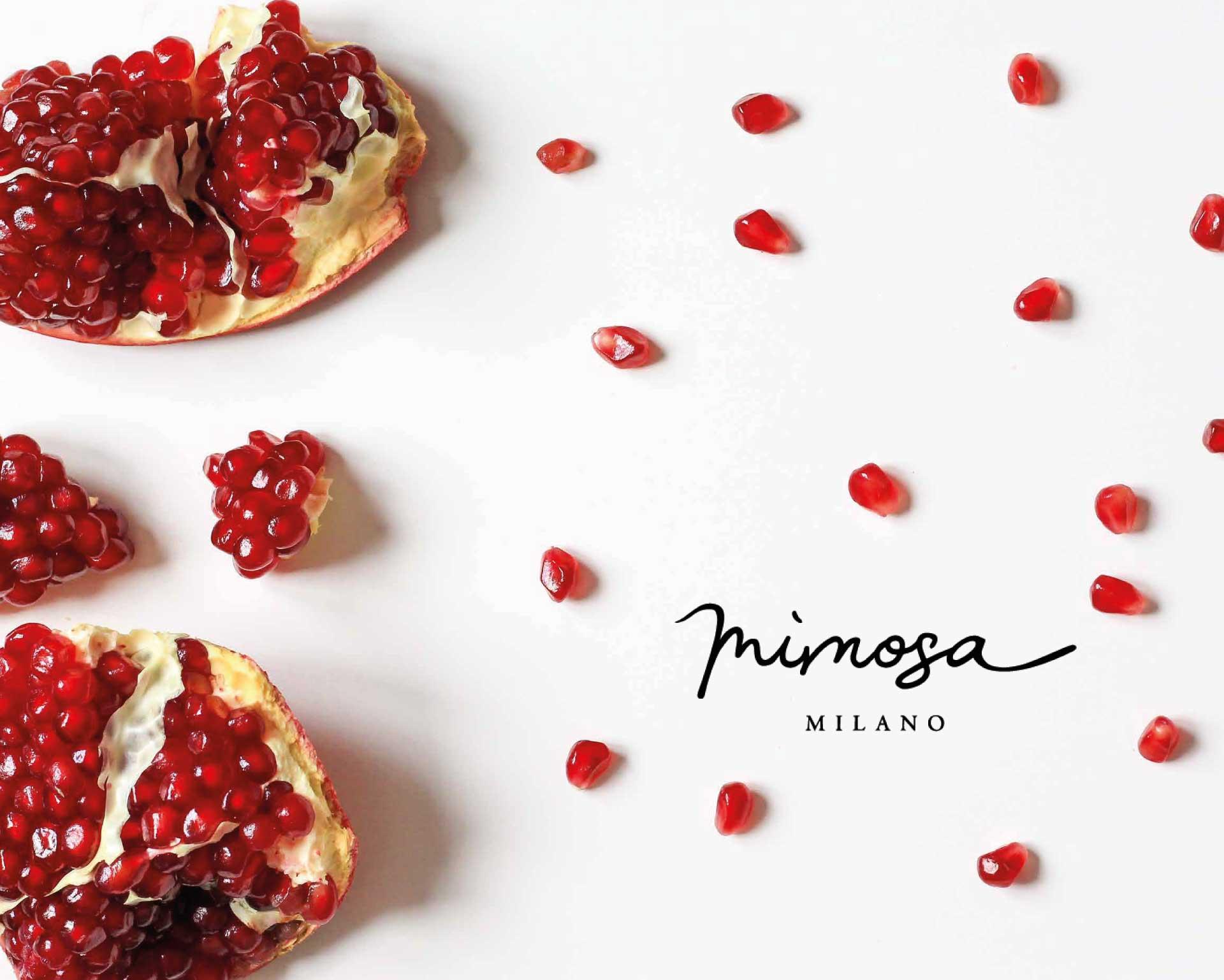 mimosa moodmama sito brochure web branding social eventi portfolio